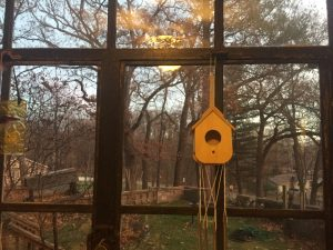 Multiple paned window with birdhouse looking out into green yard with wall and bare trees at sunset during In-Home Family Therapy.