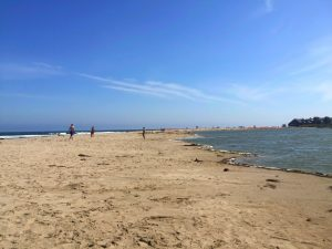 Long sandy beach with the ocean on the left and a lagoon on the right with people walking on a Connected Family Fun, LA; Malibu Lagoon afternoon activity.