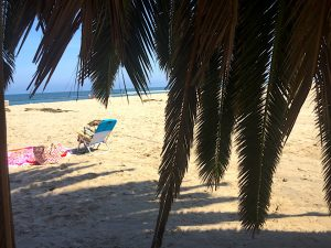 Looking through green palm branches to a beach chair resting alone on a sandy beach on a Connected Family Fun, LA: Malibu Lagoon homework assignment from Family Therapy.