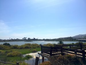 An elevated brown wood deck leans over a marsh area with deep blue sky on a Connected Family Fun, LA; Malibu Lagoon afternoon with the family.
