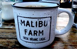 "White ceramic coffee cup with black lettering in a square stating ""Malibu Farm; Fresh, Organic, Local,"" being enjoyed on a Connected Family Fun, LA; Malibu Lagoon meal."