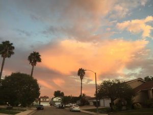 Orange and yellow clouds at sunset overlook horizon of palm tree lined suburban street with houses and cars.